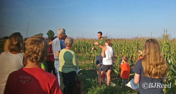Jay giving a quick tutorial on picking corn.