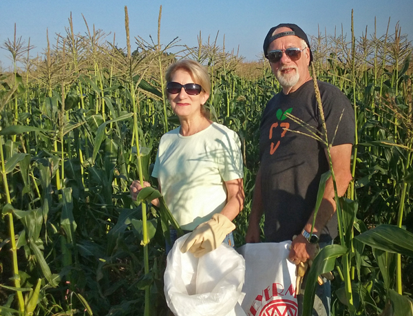 Me and Tom gleaning corn at Etter's.