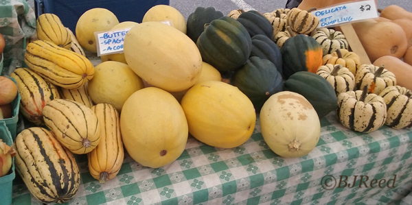 Various Winter Squash at the Market