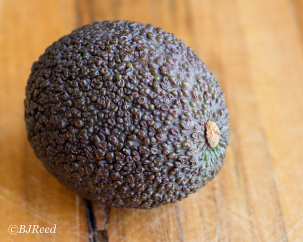 Just Ripe Avocado